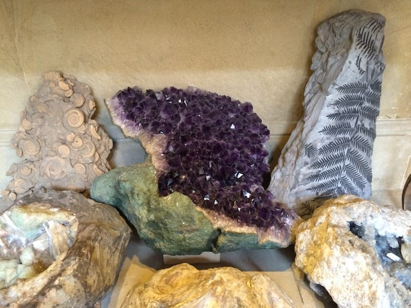 Mineral and fossil collection | Chatsworth House | Derbyshire | England