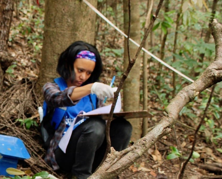 Taking down measurements in the Western Ghats forest | Sirsi volunteering | Earthwatch