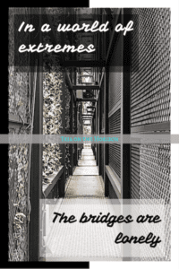 Poetry | The Middle Bridge | Teja on the Horizon | world of extremes | polarised world