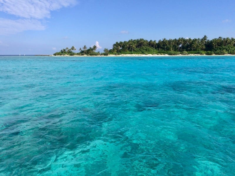 Maldives turquoise water | Crystal clear sea in the Maldives | Teja on the Horizon