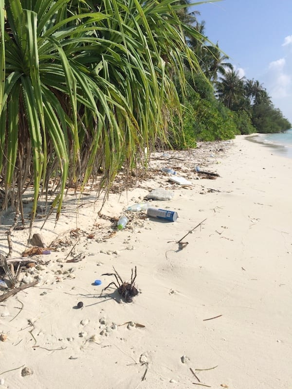 Maldives plastic waste | marine plastic debris | marine plastic waste | Teja on the Horizon