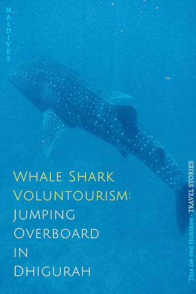 In with the tide to Dhigurah and jumping overboard | Maldives Whale Shark Research Programme | MWSRP | Dhigurah, South Ari | voluntourism | sustainable tourism | wildlife volunteering | personal growth | making new friends | island life | Teja on the Horizon