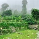 Annapurna in the Monsoon Day 2: At the Brink of Fog and Cloud