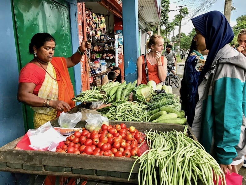 Grocery shopping in Pokhara | fresh produce in Nepal | roadside vegetable vendor | The Kashmiri Serendipity: Stories of Female Travellers in Pokhara