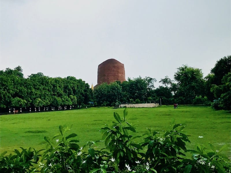 Dhamek stupa in the distance, seen across the lawn of Sarnath temple near Varanasi, India | Holy site of Buddhism | Spot of Buddha's first teaching